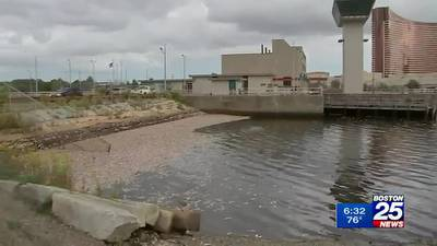 Thousands of fish die near Assembly Square, Encore
