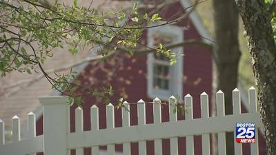 Property tax problems: New issues uncovered months after Boston 25 report