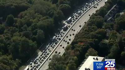 Study finds old rush hour patterns not returning soon